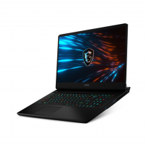 "MSI GP66 Leopard 10UG-080AU 15.6"" Gaming Laptop,i7-10870H,16GB,1TB SSD, GeForce RTX 3070"